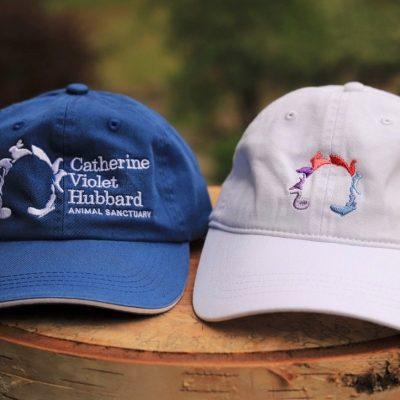 CVH Hats (1)