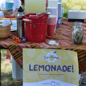 Favorite-Lemonade-picture_gal_thumb-e1484715609970
